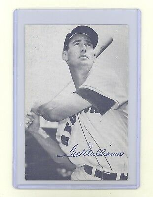 """Ted Williams 1951-1953 Autographed 5.5"""" x 3.75"""" Glossy B& W Photo Postcard"""