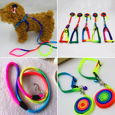Small Dog Cat Adjustable Harness Lead Pet Puppy Leash Rope Safe Cord Colorful