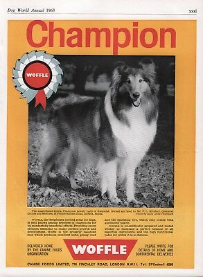 Collie Lovely Lady Of Glenmist 1963 Dog Breed Kennel Advert Page Woffle Dog Food