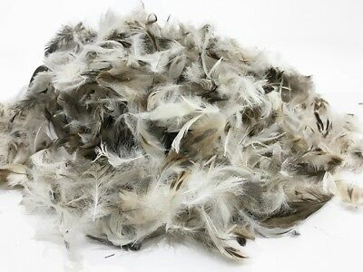 Quality Duck Feather Toy Stuffing - Pillow, Cushion, Sofa Feather Filling