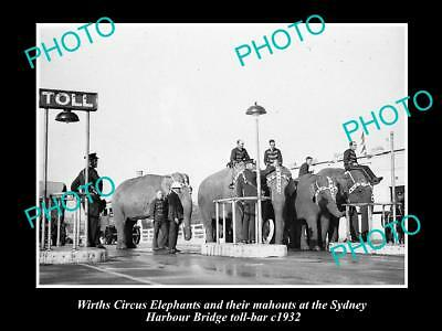 Old Large Historic Photo Of Wirths Circus Elephants At The Bridge Toll Gate 1932