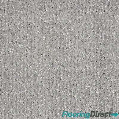 Light Grey Felt Back Carpet - Lounge Bedroom - Any Size Stain Free Twist - CHEAP