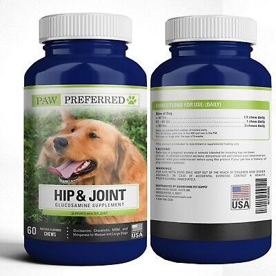 Premium Canine Glucosamine Chondroitin MSM for Dog Hip & Joint Beef Chews USA
