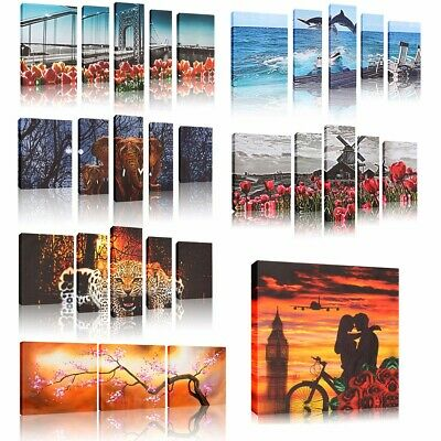 Unframed Modern Abstract Art Oil Painting Canvas Print Picture Home Wall Decor