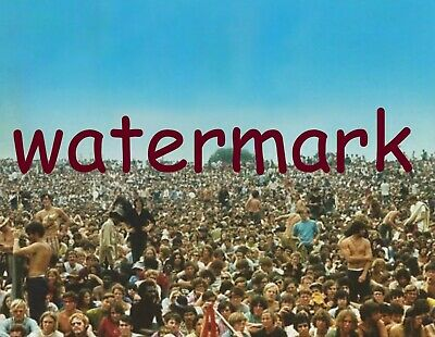 Rare Vintage Woodstock Rock Concert The Crowd August 15th, 1969 Publicity Photo