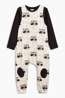 Girls Clothes NEXT Raccoon Harem Sweat Dungarees & LS Top Outfit 5-6 Years BNWT