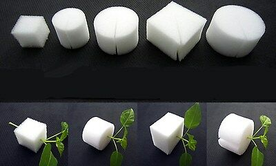25PCS White Clone Cloning Collar Foam Insert Hydroponic Root Guard Mesh Pot