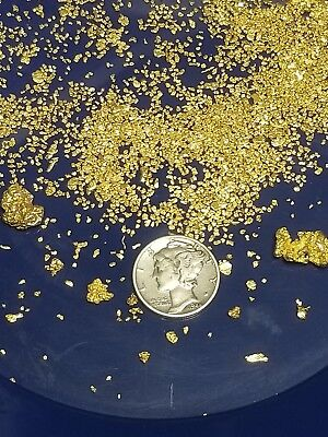 Gold Paydirt 1 lbs 100% Unsearched and Guaranteed Added GOLD! Panning Nuggets