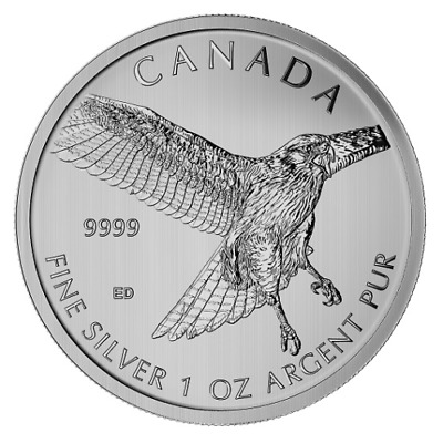 Canadian Silver 1 oz Red-Tailed Hawk 2015 - Birds of Prey Series