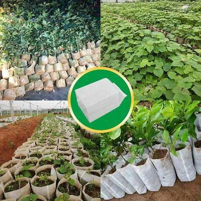 Seed Bags Seeding Non-woven Fabric 20*22cm Home Plant Accessories 100pcs Garden