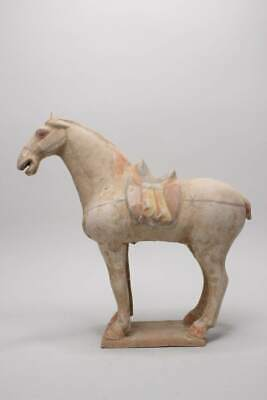 Chinese China Made of Ton (37 cm) Terracotta Figure Horse - Asienlifestyle