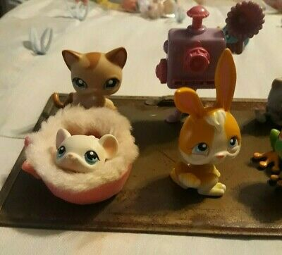 Littlest Pet Shop~Lot Of 20 RANDOM  Pets, Nice Selection  Please see pics