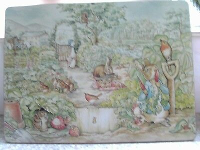 EXTRA LARGE PETER RABBIT TABLE MATS  x  2  - NEW -  40cm x 29.5cm