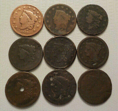Large Cents Collection old US coins No Reserve