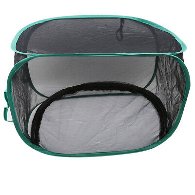 Black Mesh Insect Butterfly Breeding Cage Habitat Net Keeper Pops-up 6A
