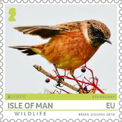 ISLE OF MAN 2019 EUROPA CEPT. NATIONAL BIRDS.1 stamp with Europa Logo MNH