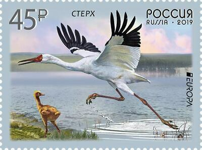 RUSSIA 2019 EUROPA CEPT. NATIONAL BIRDS.1 stamp MNH