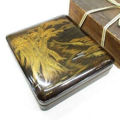 B951: High-class Japanese old lacquered ink stone case with wonderful MAKIE