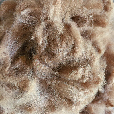 Alpaca Fleece Roan Fibre 2018 Victorian Fleece Spinning Supplies Bulk 1.5kg