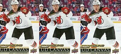2018/19 Upper Deck Series 2 Young Guns Canvas Joey Anderson 3 Cards Lot