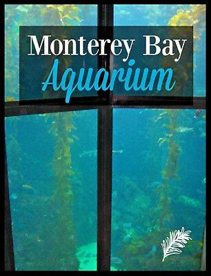 MONTEREY BAY AQUARIUM Tickets Promo Savings Tool Discount ~ FAST DELIVERY!
