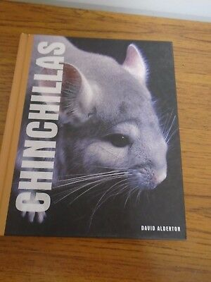How To Look After Chinchillas