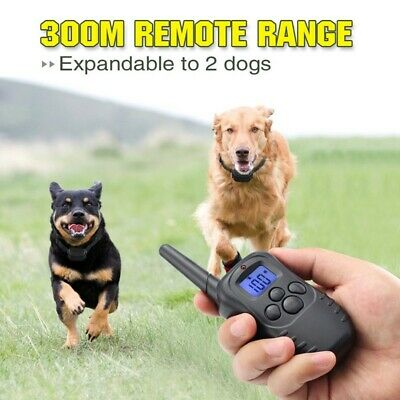 Petrainer Rechargeable Remote Dog Training Collar Shock Collar for 2 Dogs 【US】