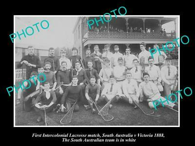 OLD LARGE HISTORIC PHOTO OF THE SOUTH AUSTRALIA v VICTORIA LACROSSE TEAM c1888
