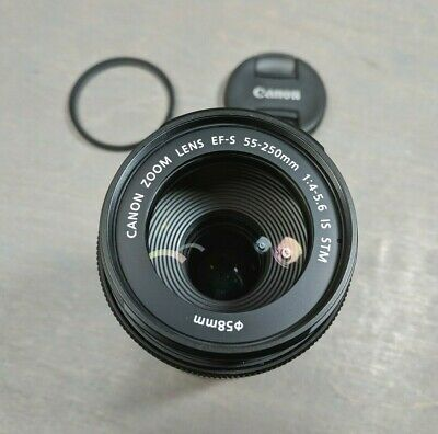 Canon 55-250mm f/4-5.6 IS STM EF-S Mount Lens - Very Nice!