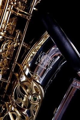Kenny G  E-Series IV  Alto Saxophone with Silver Plated Bow and Bell