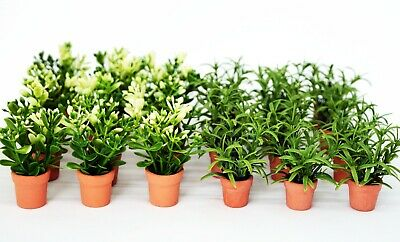 Dolls House Miniature Plant Terracotta Pot Flowers Living Room Bedroom Roses