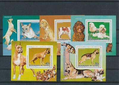 [G47875] Guinea : Good Lot of 5 Very Fine MNH Sheets