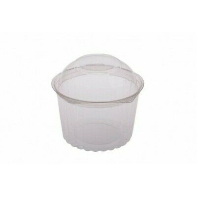 250x Clear Plastic Container w Hinged Dome Lid 16oz / 455mL Disposable SPECIAL