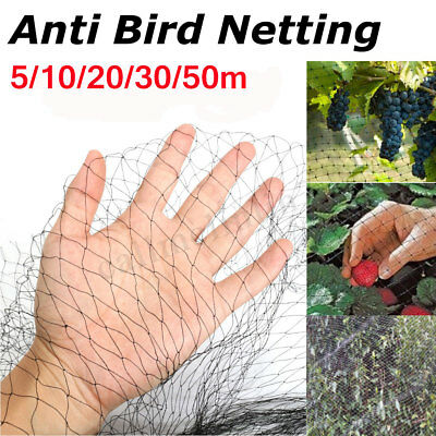 Bird Fruit Crop Garden Pond Agricultural Protection Netting 4m 10m 15m 50m Wide