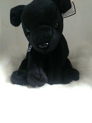 """1998 TY Beanie Baby """"Luke"""" Black Lab Retired with Tags"""