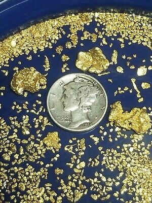 VERY NICE 8 oz Gold Paydirt 100% Unsearched and Guaranteed 20 Added GOLD Nuggets