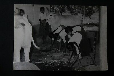 Indian Old Vintage Very Fine Black & White Photograph Collectible 51