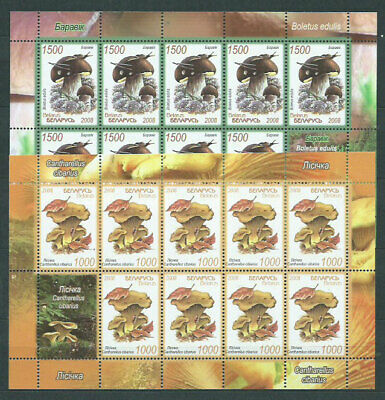 Belarus - Mail 2008 Yvert 636/7 Miniature Sheets Collectors'stamps Mnh Mashrooms