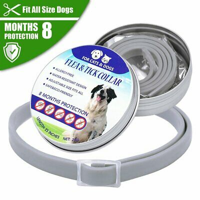 Flea and Tick Collar Adjustable for Small Medium Large Dog 8 Month Dogs Cats AU