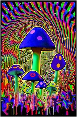 Mind Melt - Mushrooms Blacklight Poster - 23X35 Flocked 53127