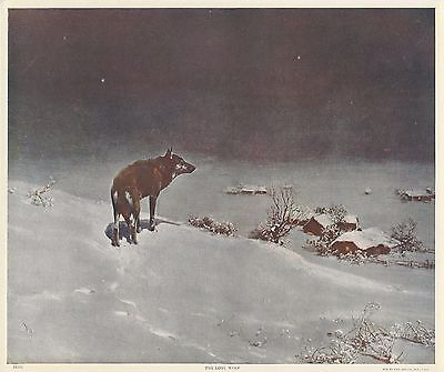 """1920s Original Print by Victor Kowalski """"The Lone Wolf"""" National Art Co New York"""