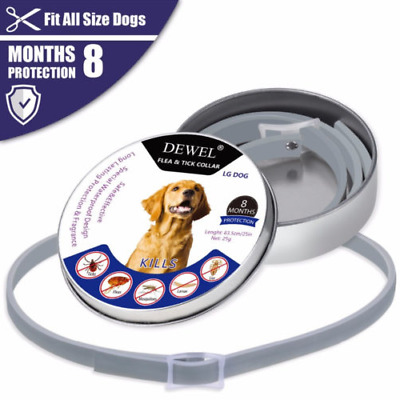 US DEWEL 63cm DOGS Flea and Tick Collar for Large Dogs 8 Month Protection