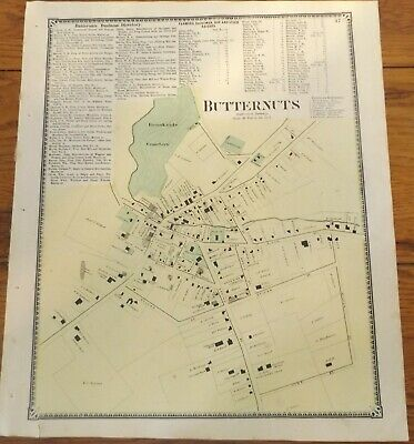 1868 NY Butternuts Village Otsego County Map from Atlas by Beers