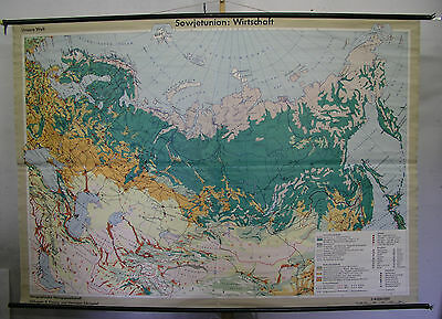 Schulwandkarte Map Wall Map Map Russia Forest Taiga Forrest 231x161cm ~ 1960