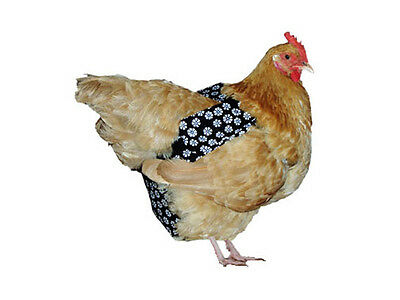 Chicken Diaper or Chook Nappy - LARGE Size