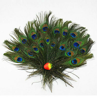 100x Real Natural Peacock Tail Eyes Feathers 8-12 Inches Home Decor NICE AU