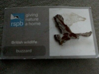 RSPB Enamel Pin Badge – Buzzard - damaged card