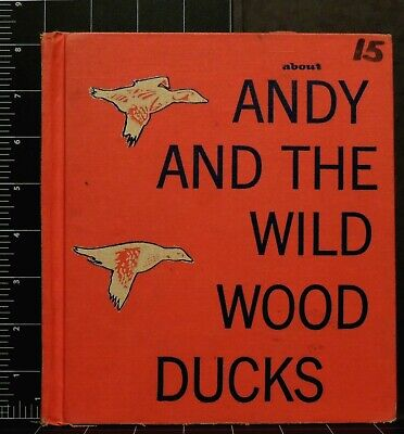 Andy and the Wild Wood Ducks Vintage 1959 Illustrated Children's Book Mayo Short
