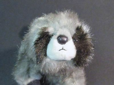 Ty Plush Bean Bag Beanie Babies Collection Snoops the Raccoon 2004