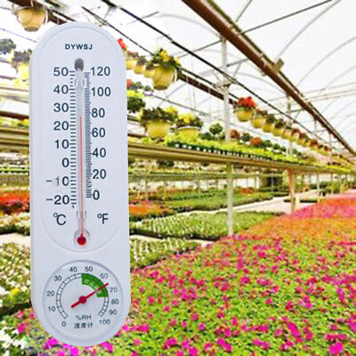 Greenhouse Analog Thermometer Hygrometer Wall-mounted Temperature Humidity Meter